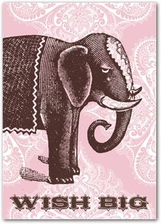 pink elephant by Cartolina Elephant Art, Pink Elephant, Elephant Information, Biggest Elephant, Create Invitations, It's Your Birthday, Happy Birthday, Vintage Birthday, Favim