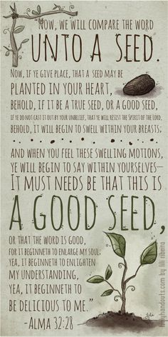 #BOMTC Day 46, May 22~Alma 32-33 or Pages 287-293: Nourishing the S.E.E.D. of the Word of God | The Book of Mormon Translation Challenge