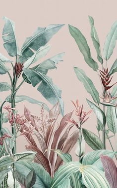 Give your space the dreamy transformation it deserves with Redouté Pink as your new tropical accent-wall. This whimsical wallpaper mural mixes a light dusty pink background with coral, purple, and minty green tones in the trees and leaves. The result is wall design that feels like an island paradise. The plant illustrations are botanical art pieces from the 1800s, which we have given a modern-meets-vintage makeover. Cute Wallpapers, Wallpaper Backgrounds, Plant Wallpaper, Leaves Wallpaper, Vintage Wallpapers, Wallpaper Murals, Painting Wallpaper, Pink Wallpaper Texture, Pattern Wallpaper