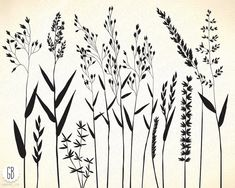 Wild herbs, hair grass, wheat Graphics Welcome to **GrafikBoutique!**This listing consists of 14 hand drawn green and black grass clip ar by GrafikBoutique Rustic Flowers, Wild Flowers, Types Of Flowers, Grass Drawing, Black Grass, Hand Embroidery Patterns, Embroidery Designs, Botanical Illustration, Doodle Art