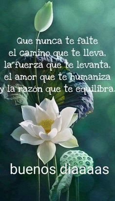 Morning Quotes Images, Good Day Quotes, Gods Love Quotes, Good Morning Quotes, Quotes Amor, Beautiful Morning Messages, Good Morning Messages, Good Morning Greetings, Good Morning In Spanish