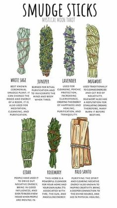 Witchcraft For Beginners, Wicca For Beginners, Meditation For Beginners, Herbal Magic, Baby Witch, Smudge Sticks, Healing Herbs, Holistic Healing, Medicinal Plants