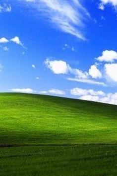 Windows XP Bliss Wallpapers HD Wallpapers 2019 컴퓨터
