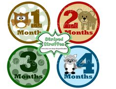 Monthly Onesie Stickers- Printable Baby Boy- Different Animals- Cute stickers- Month by Month 12 months. $5.00, via Etsy. https://www.etsy.com/shop/StripedGiraffes