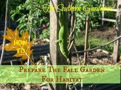 TSG: Preparing The Fall Garden For Habitat