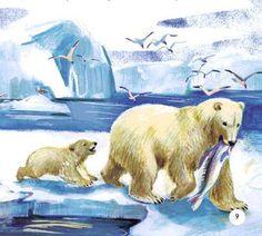 Artist ? Baby Polar Bears, Artist, Animals, Animales, Animaux, Artists, Animal, Animais