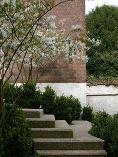 Garden by Hans Verst