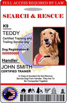 Holographic Search and Rescue Dog ID Card -- Want to know more, click on the image. (Note:Amazon affiliate link)