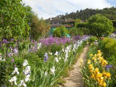 Jardin de Monet en Giverny | by Cielaria.com