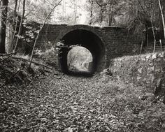 Fay Godwin photograph archive