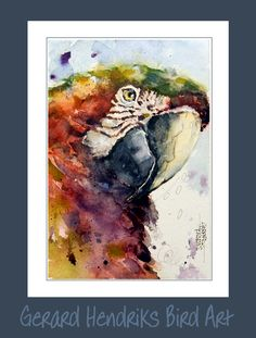 Watercolor Watercolor Bird, Watercolor Paintings, Typical British, Great Paintings, Artist Names, Best Artist, Artist Painting, Beautiful Birds, Wonders Of The World
