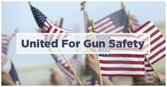 Senate Democrats introduced a set of sweeping principles to stop the epidemic of gun violence. We need your support, right now, to show that Americans won't take no for an answer.