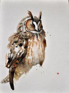 Long-Eared Owl - Karl Mårtens - watercolor