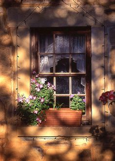 stone cottage with beauty at the window