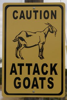 Attack Goats