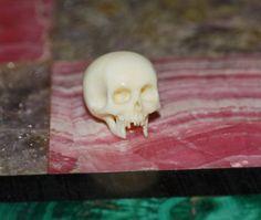 Ancien tete de mort de jambe sculpté-Mémento Mori, skull (# 4971) in Antiquitäten & Kunst, Alte Berufe, Arzt & Apotheker, Praxisausstattung | eBay