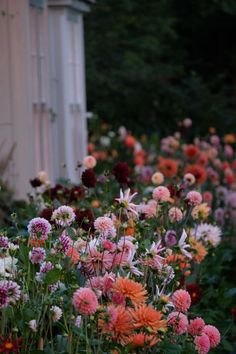 Gardener and floral designer Charlie McCormick gives advice on his go-to flower choices, creating centerpieces and why you should grown your own wedding bouquet.