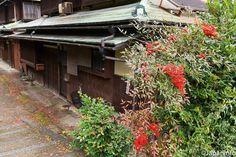 Japaninfo added 15 new photos to the album: คาเฟ่เงียบ งดงามบนเนิน Yoshida-yama ใจกลางเกียวโต@MO-AN — at 茂庵.