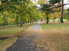 Walkway in the fall. New Brunswick, Walkway, Most Beautiful, Sidewalk, Country Roads, Canada, Fall, Autumn, Sidewalks