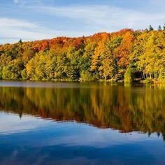 Couleurs d'automne à Saint-Malo-de-Beignon en Forêt de Brocéliande