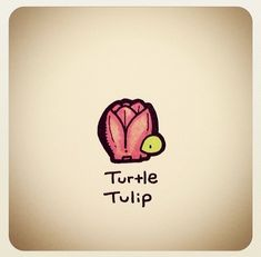 What do tortoises eat? Cute Turtle Drawings, Cute Animal Drawings, Kawaii Drawings, Cartoon Drawings, Easy Drawings, Small Drawings, Turtle Time, Tiny Turtle, Pet Turtle