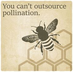 Take care of the bees!