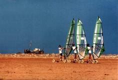 Ensablement qui éloigne les épaves de la côte mauritanienne