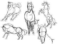 horse study by rika-dono.deviantart.com on @deviantART