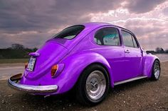 Purple Bug                                                             (rePinned 091413TLK)