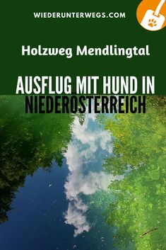 Ausflug mit Hund: Das Mendlingtal. Top Ausflugszele Niederösterreich. Holztriftweg