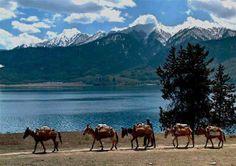 Mustang Lake