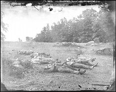 Civil War Photos - 547. Soldiers Killed on July 2 in the Wheatfield Near Emmittsburg Road - Gettysburg, PA, July 1863