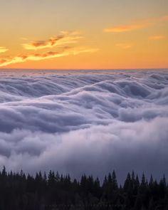 Video mostrando mar de nevoeiro na Califórnia, a natureza é espetacular! Beautiful Photos Of Nature, Beautiful Sky, Nature Pictures, Amazing Nature, Beautiful Landscapes, Beautiful Places, Beauty Of Nature, Beautiful Nature Photography, Lake Pictures