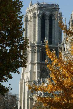 Notre Dame of Paris Cathedral Tower Cathedrals, Notre Dame, Castles, Tower, France, Paris, Landscape, Travel, Viajes