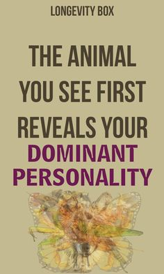 The Animal You See First Reveals Your Dominant Personality