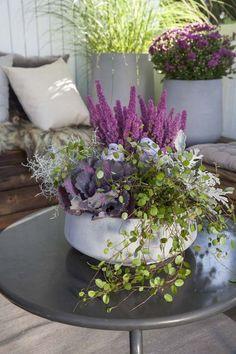 Lot de 2 TIN Conteneurs Avec En bois Couvre adapté pour les plantes /& fleurs