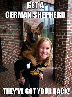 Must Love German Shepherds!