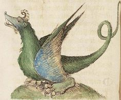 Koninklijke Bibliotheek, KB, 72 A 23, Folio 47v  A dragon with a horn and very large feet. This image was probably the original for the copy in manuscript Koninklijke Bibliotheek, KB, 128 C 4.
