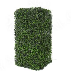 Home decoration Artificial Boxwood Hedge Boxwood Hedge, Artificial Boxwood, Hedges, How To Dry Basil, Architecture, Decoration, Image, Home Decor, Arquitetura