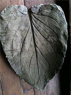 How to make cement birdbath using leaves, rhubarb, skunk cabbage, giant maple etc.