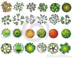 Landscape Design Symbols | ... set of colored treetop symbols, for architectural or landscape design