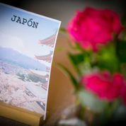 Mesa Japón