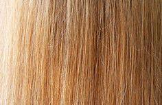 Cassia Obovata- Henna with a golden dye molecule for light hair