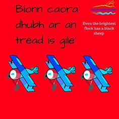 "Coláistí Chorca Dhuibhne on Instagram: ""Seanfhocail an Lae: 'Bíonn caora dhubh ar an tréad is gile'  Cúrsaí Samhraidh 2020!  Book Now 👉 Link In Bio  #colaistecd #gaeltacht…"" Irish Language, Books, Instagram, Libros, Book, Book Illustrations, Libri"
