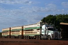 Curley Cattle Transport Mack Prime Mover 02-CCT + 3 trailers for cartage of cattle in a yard in Burke Development Road, Normanton, Queensland, Australia. by express000, via Flickr