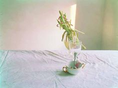 Laura Letinsky - 139 Artworks, Bio & Shows on Artsy Still Life Photography, Life Is Beautiful, Artsy, Place Card Holders, In This Moment, Sensitivity, Tulip, Inspiration, Artworks