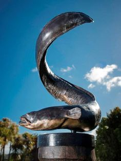 Polynesian Art, Animal Sculptures, Auckland, Whale, Sculpting, Mermaid, Metal, Gardens, Kiwi
