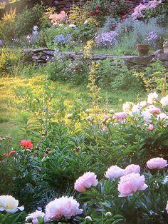 Tasha Tudor's Garden by annekata, via Flickr