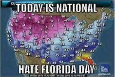 Lol i live in Florida Funny Pictures Of The Day – 91 Pics Funny Cute, Really Funny, Hilarious, Crazy Funny, Funny Pins, Funny Memes, Jokes, Funny Stuff, Funny