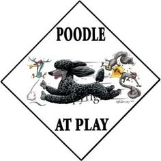Poodle At Play Sign
